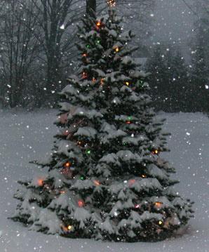 snowfall-christmas-lg