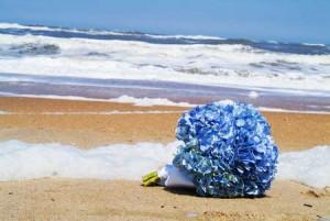 blue hydrangeas proposal