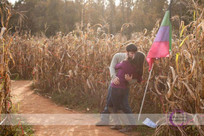 corn maze engagements
