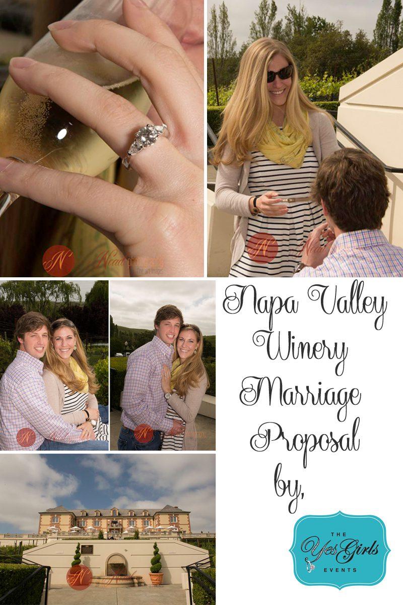 Napa Vineyards Marriage Proposal