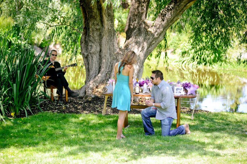 Purple Napa Winery Proposal