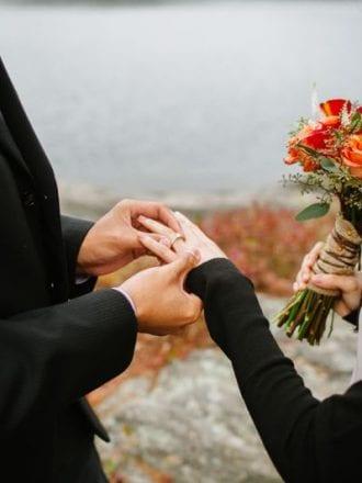 falling leaves proposal