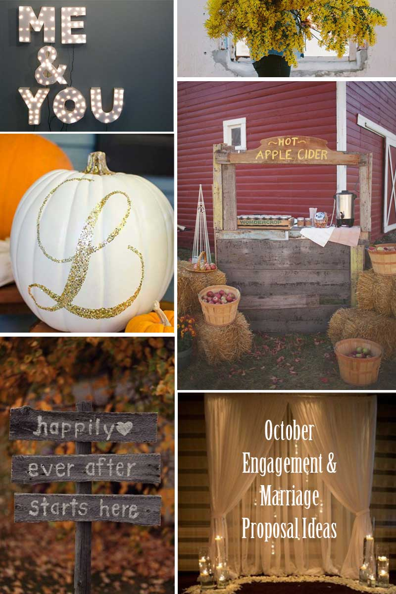 Fall-October-Marriage-Proposal-Ideas