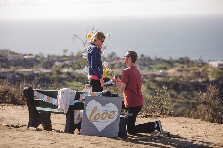 orange county beach view marriage proposal by the yes girls