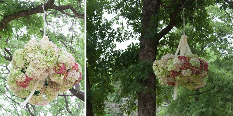 ball of flowers hanging from tree