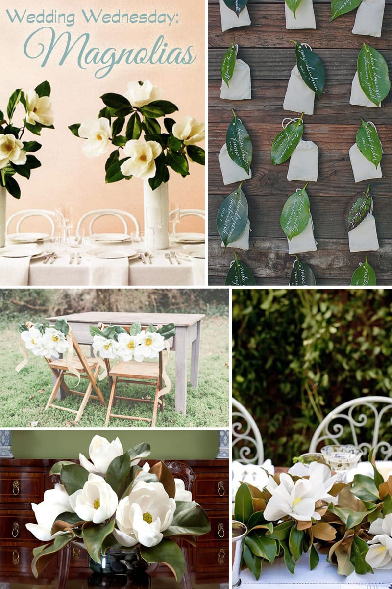 Wedding Wednesday Magnolia Flowers