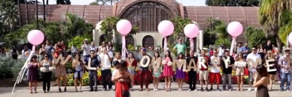 San Diego California Proposals