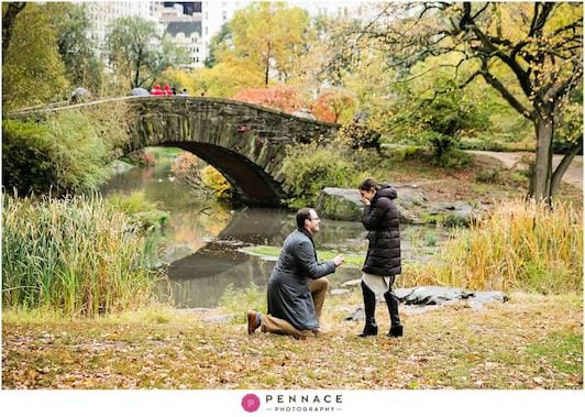 fall central park marriage proposal