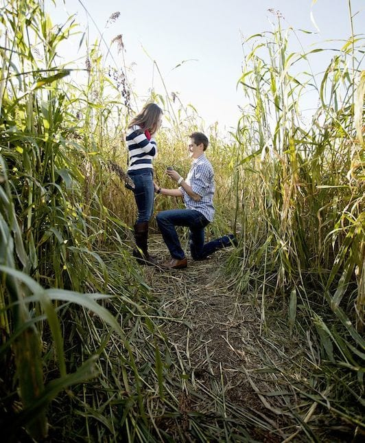 corn maze marriage proposal idea