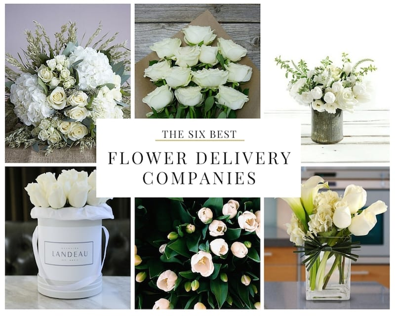 6 Flower Delivery Services that Will Change the Way You Send Flowers