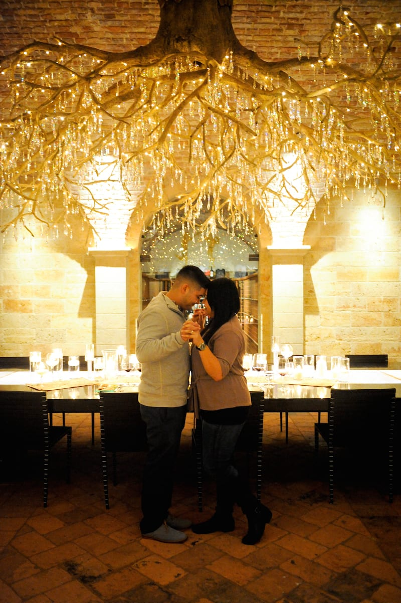 Chandelier Napa Proposal