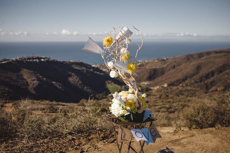 mountain hike marriage proposal