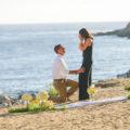 private beach in la marriage proposal