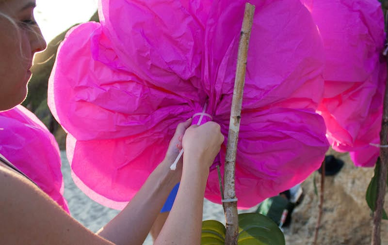 Lifesize tissue paper flower tutorial