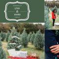 christmas tree marriage proposal