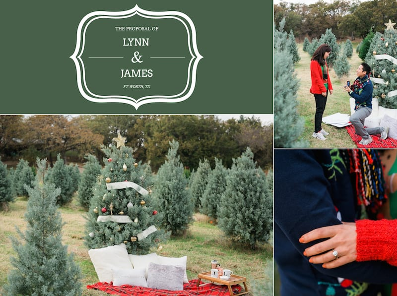 christmas tree marriage proposal