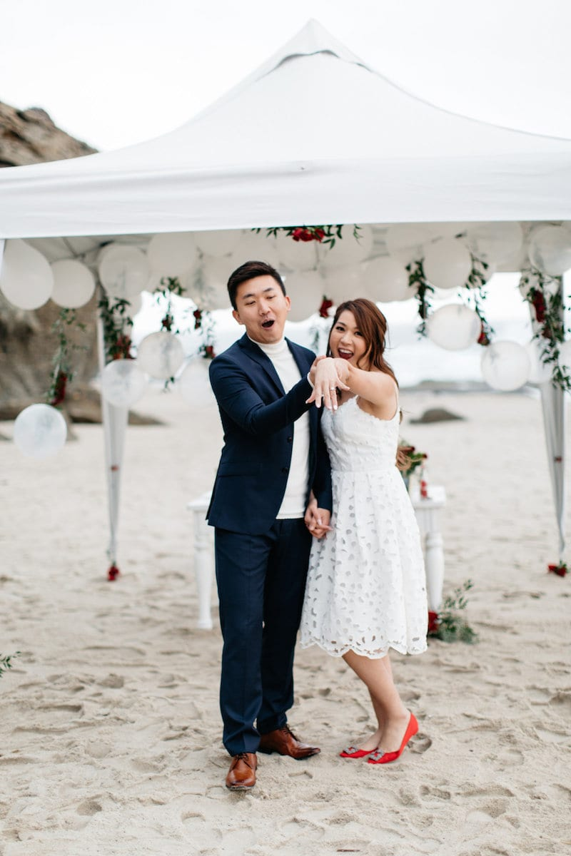 red rose on beach proposal