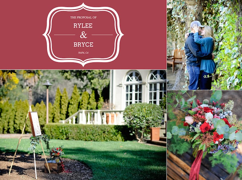 Wine Country Wedding Proposal