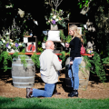 wine country marriage proposal video
