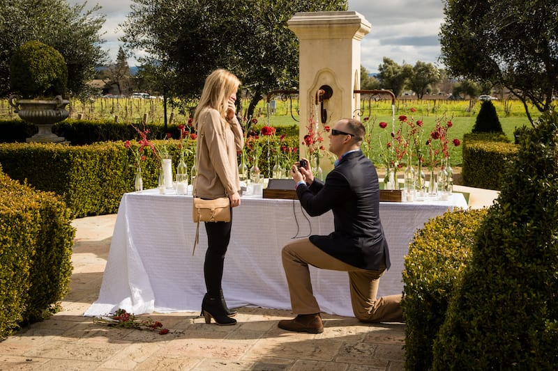 down on one knee in Napa Valley Garden