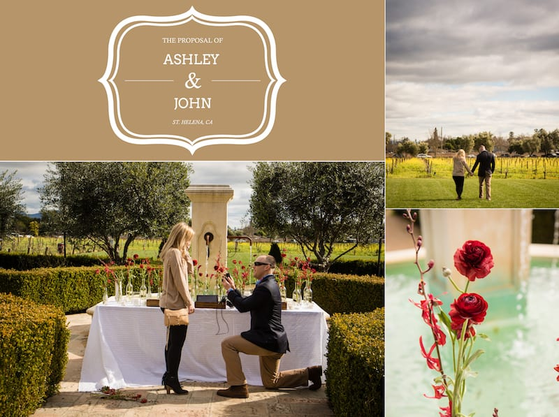 proposal in garden in wine country