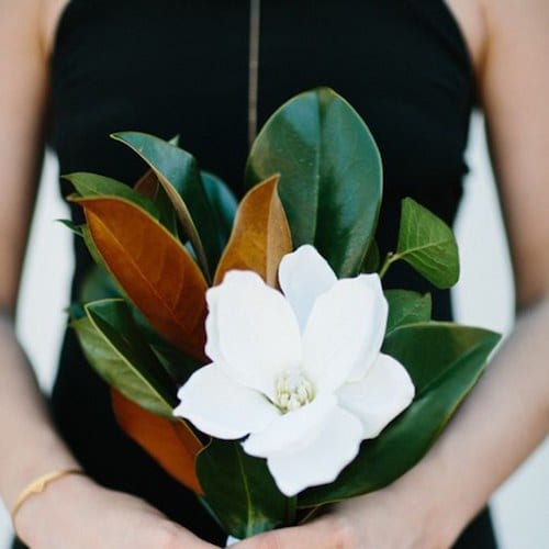 single magnolia bouquet