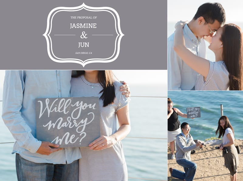 San Diego torrey pines cliffs surprise proposal