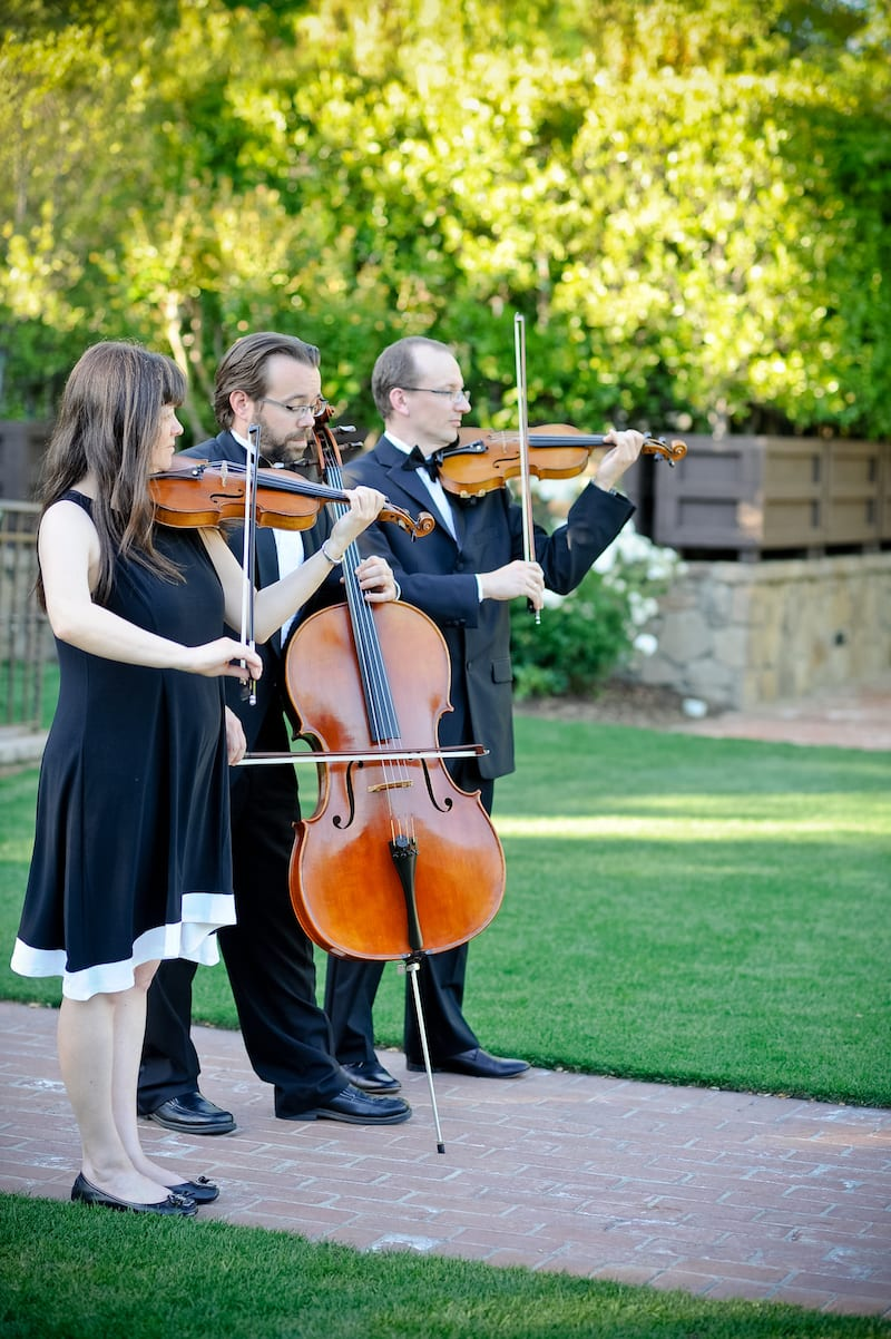 Napa valley Yountville string musicians