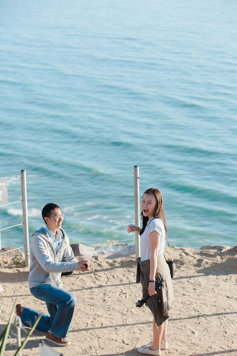 torrey pines cliffs beach wedding proposal