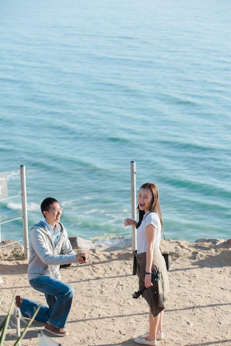 torrey pines cliffs beach wedding proposal