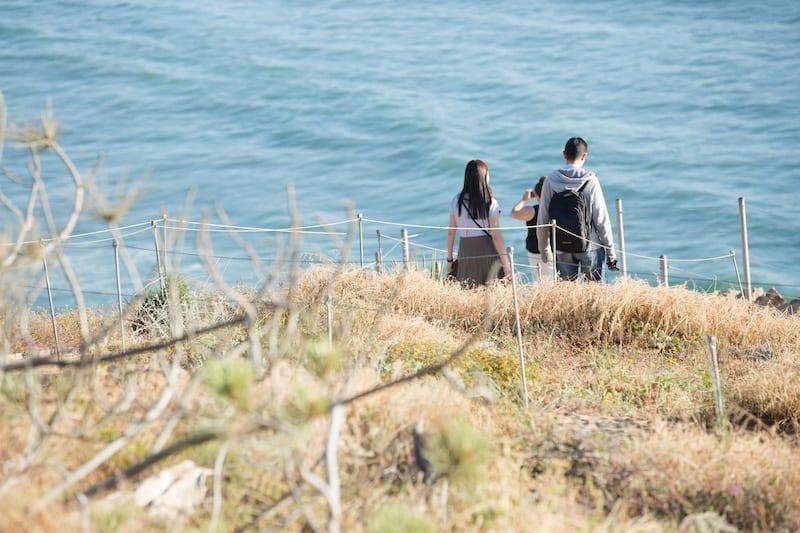 San Diego torrey pines cliffs proposal