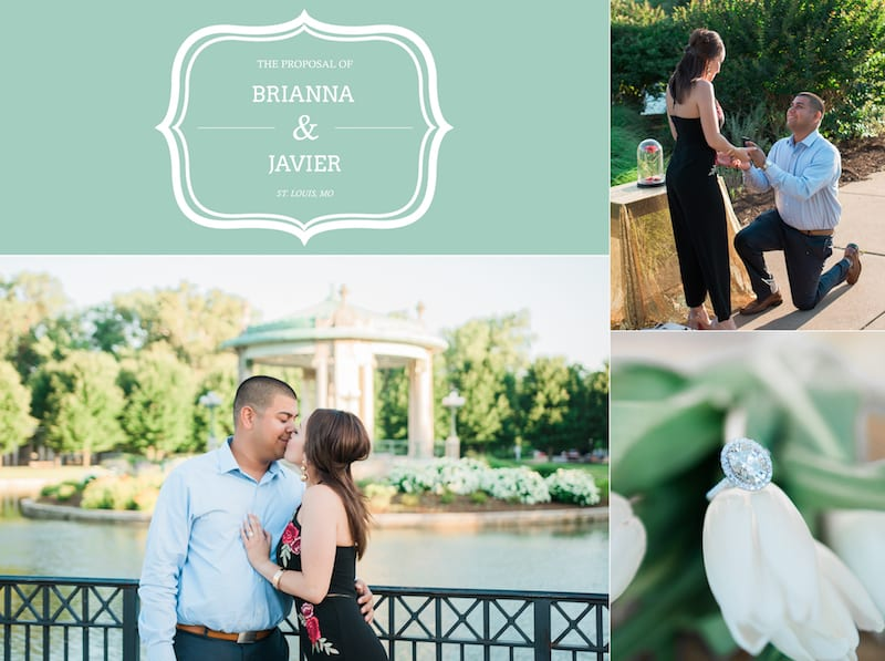 STL surprise engagement