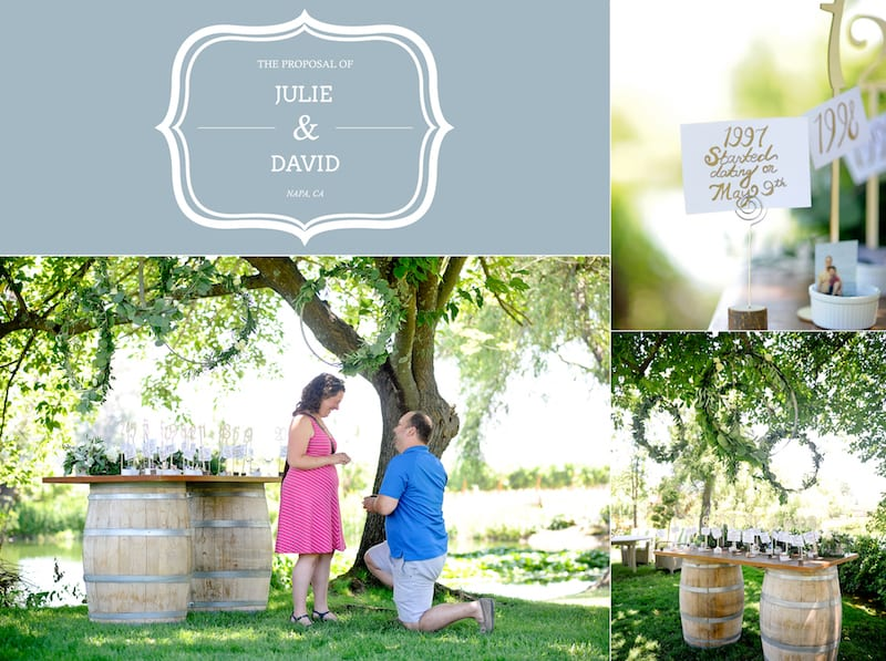 Napa Wedding Proposal at Sullivan Winery