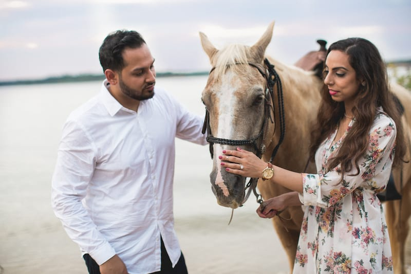 DFW lake horses proposal