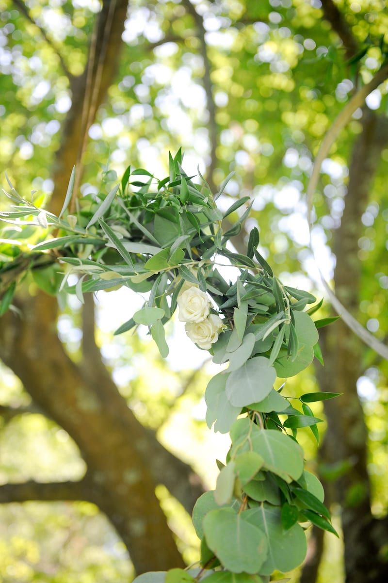 greenery and flowers hanging in a tree