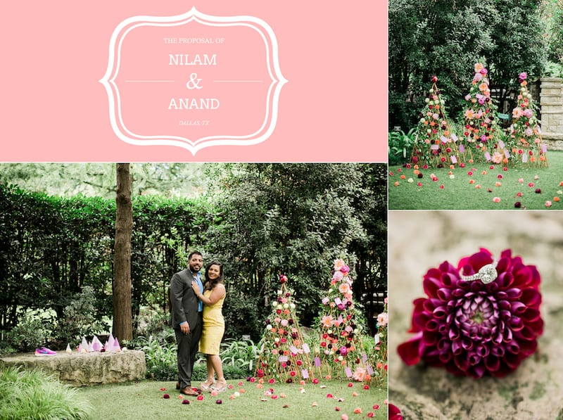 dallas arboretum orchid hollow proposal