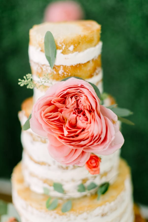 naked cake with coral garden rose