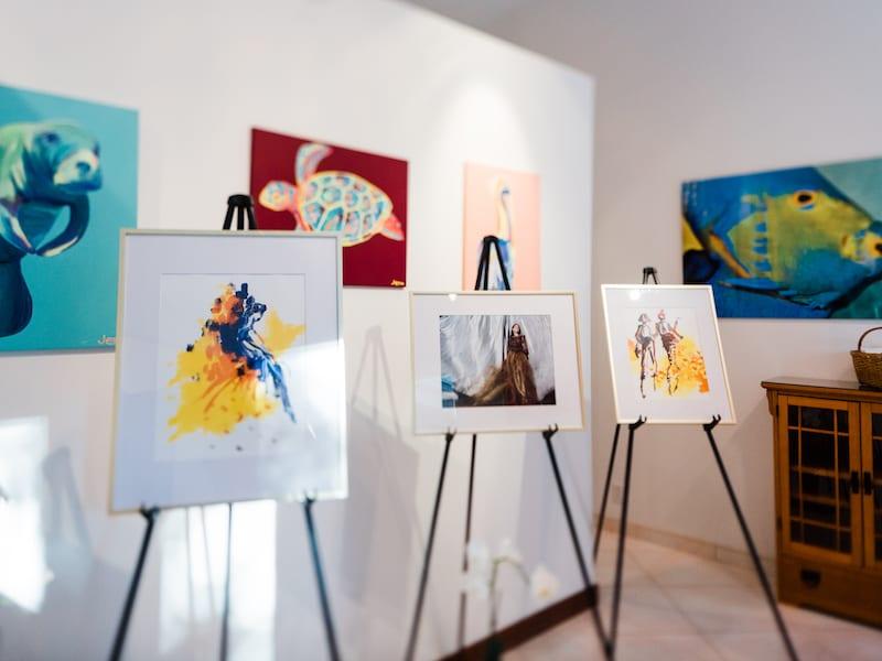 Florida beach art gallery proposal