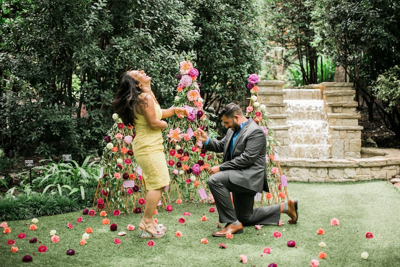 propose pics from 2017