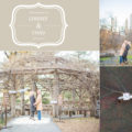 gazebo in Manhattan engagement