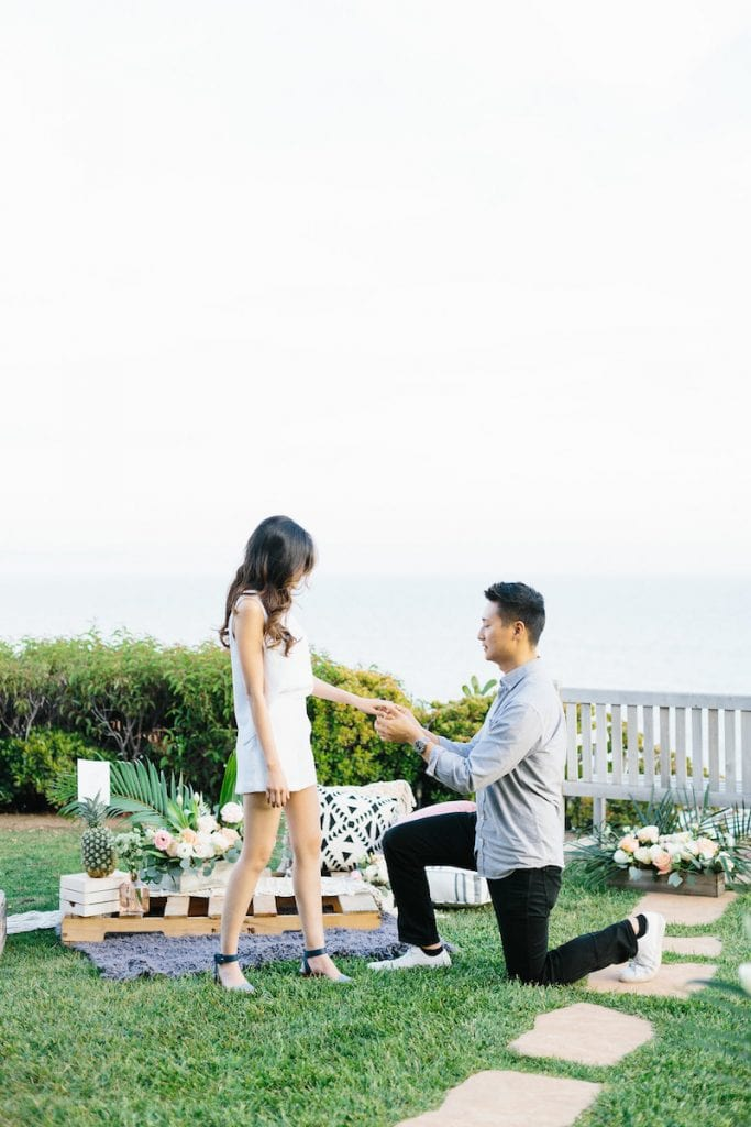 Malibu beach overlook engagement
