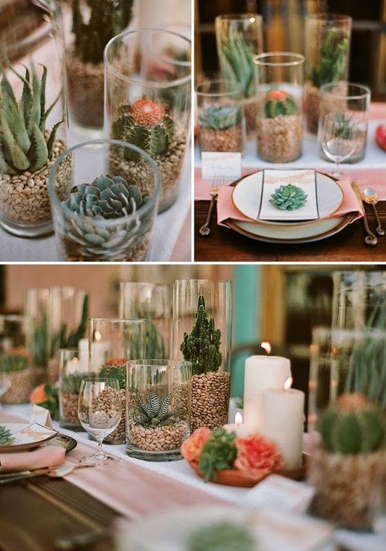 cactus proposal decor