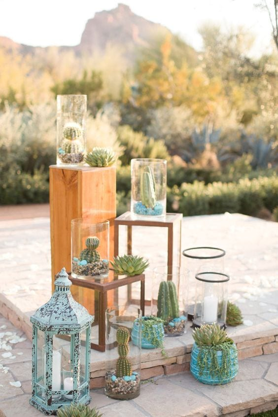 proposal decor with cactus