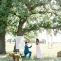 fairytale proposal in texas