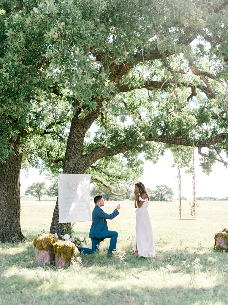 fairytale proposal in texas