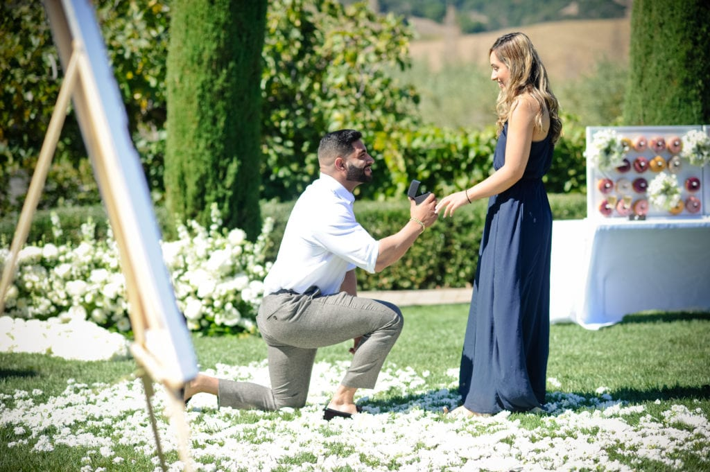 Winery proposal in sonoma