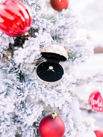 winter proposal in deer valley, utah