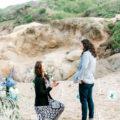 Same sex marriage proposal in California