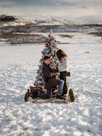 Winter wonderland proposal