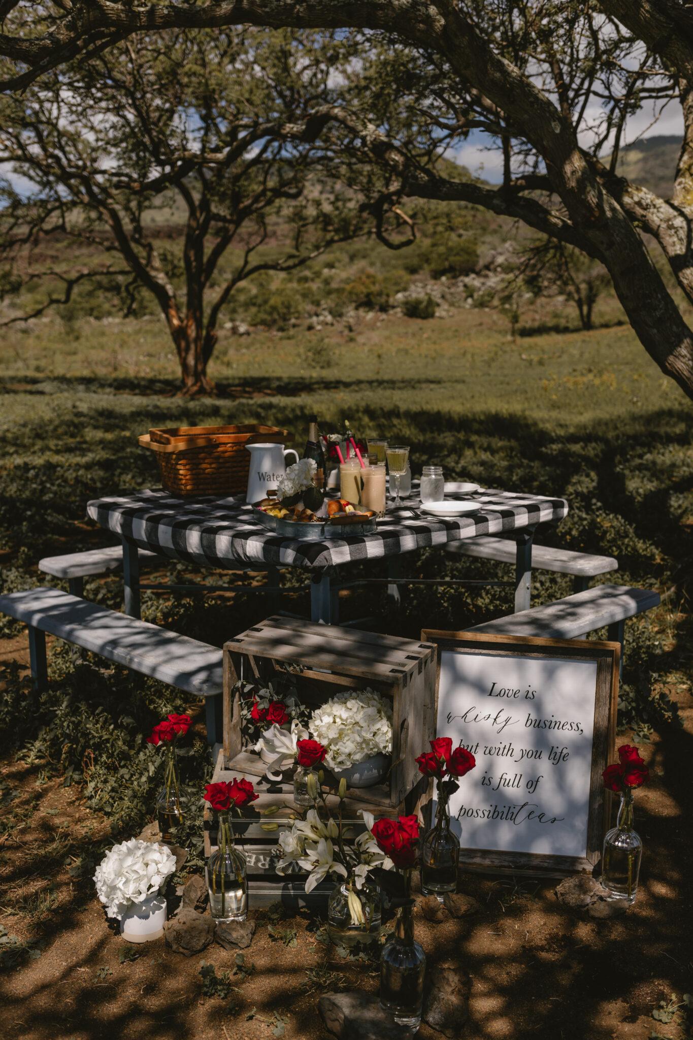 picnic proposal